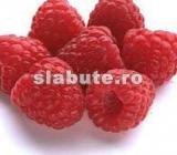 Poza (imaginea) pentru calorii Zmeura proaspata