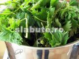 Poza (imaginea) pentru calorii Urzici, proaspete (negatite)